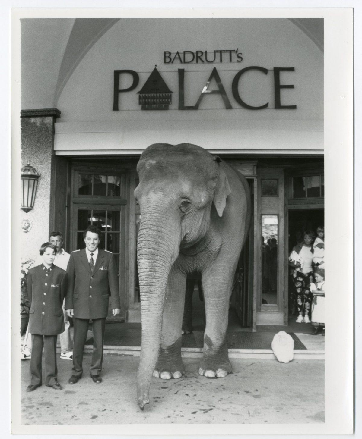 Elephant at Badrutt's Palace Hotel