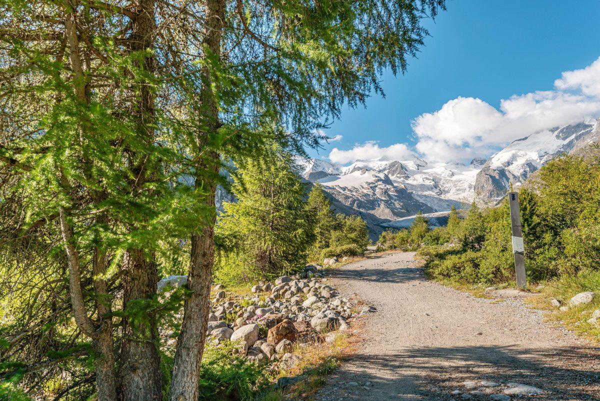 Hiking trail at the Morteratsch Glacier in summer, Engadin, Switzerland