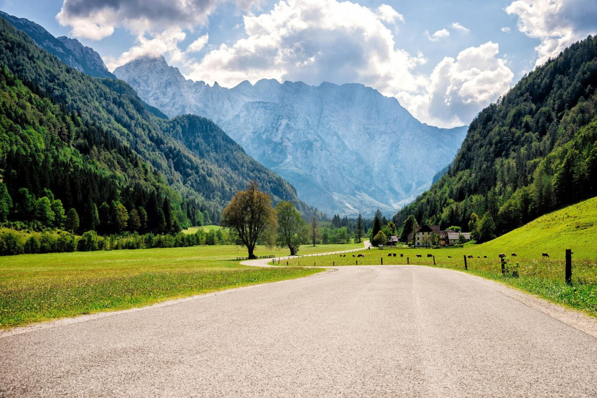 Road through the alps