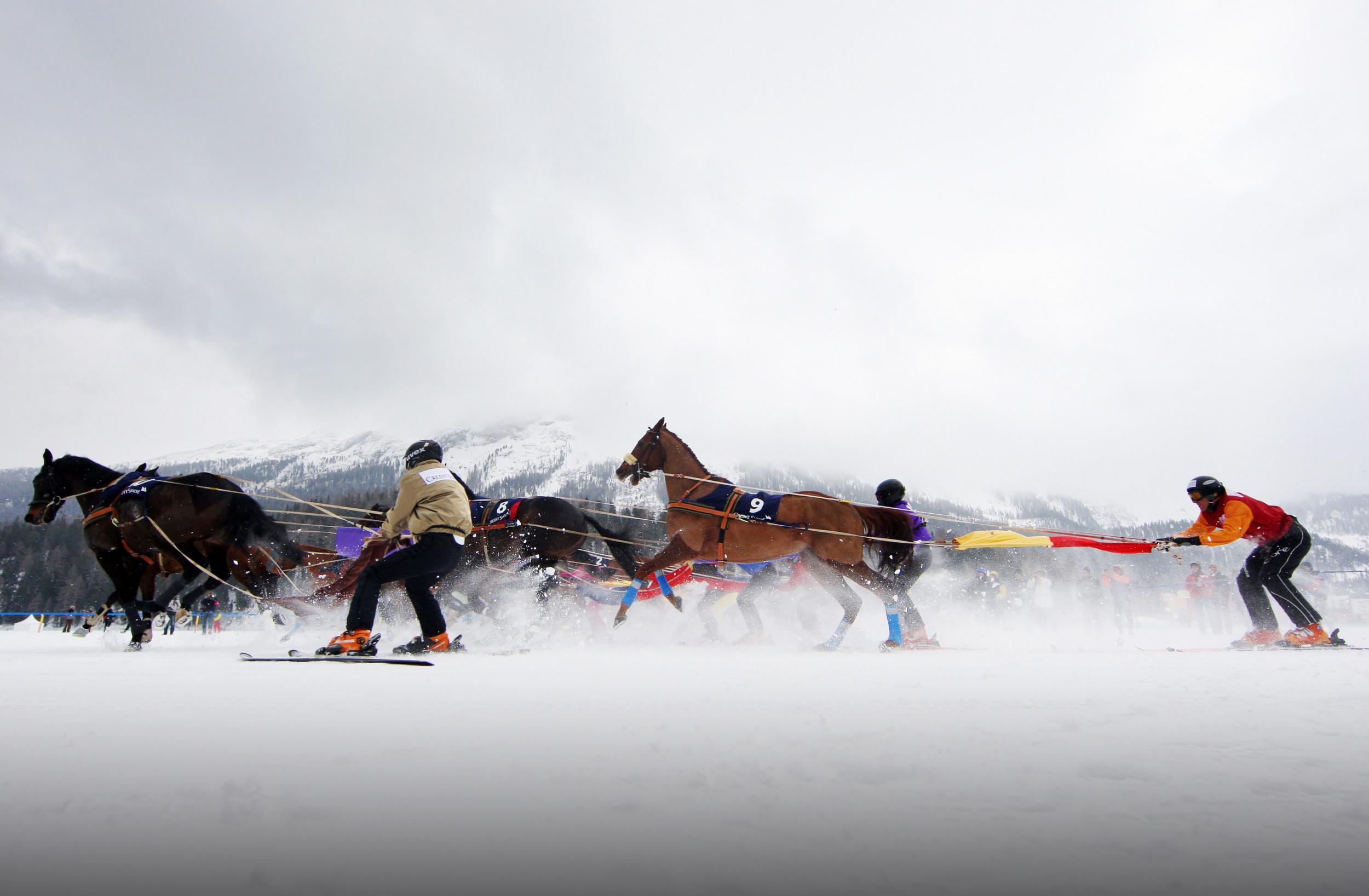 Skijoring in St. Moritz