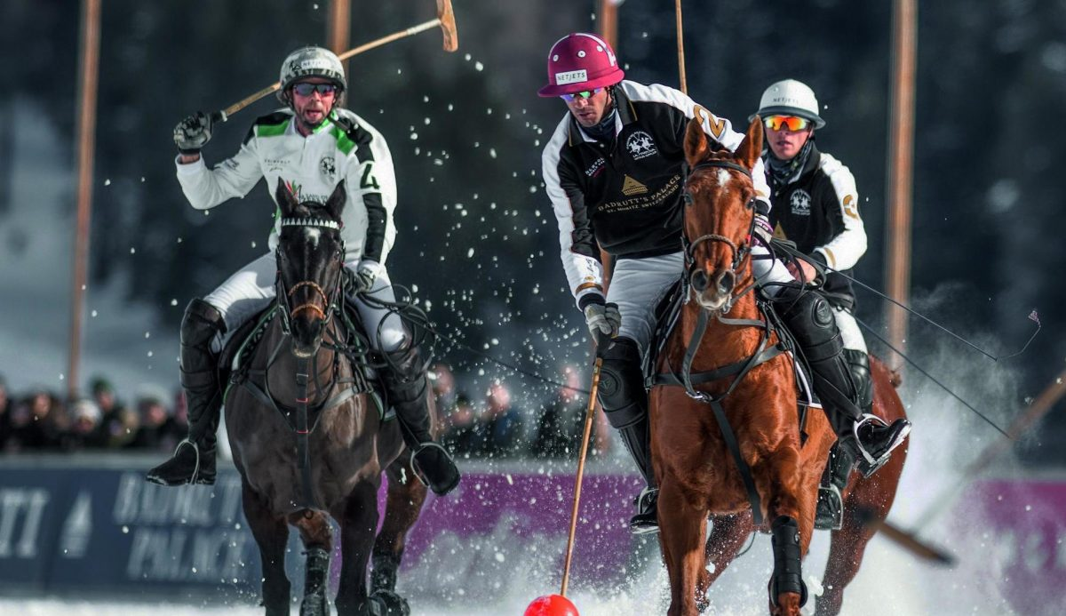 Polo riders on horses